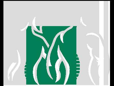 Chiropractic Chesapeake VA Spine
